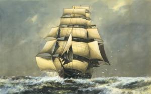 Il Lighting, il veliero a cui Mackay si ispirò per costruire Champion of the Seas