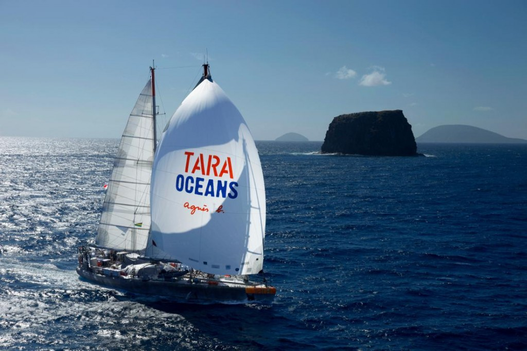 tara-ocean-expedition-plankton