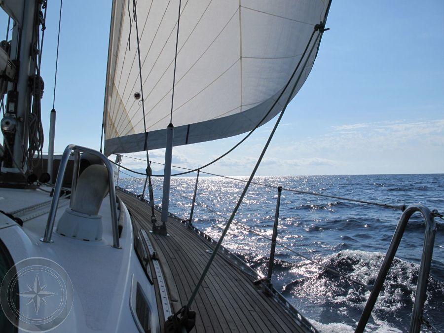 sirena 40