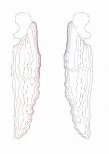 Il profilo della pinna di una megattera