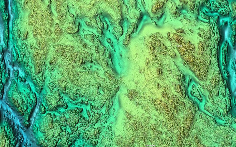 c-map-reveal